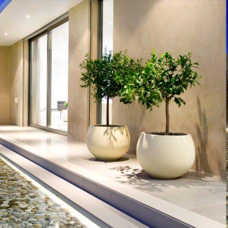 Trends in de luxe onroerend goed markt
