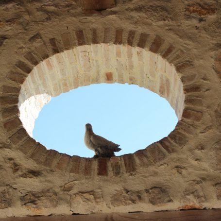Authentieke woningstijlen in de Provence