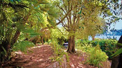 3 pièces avec grand jardin  - Villefranche sur Mer - La Darse